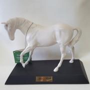 Cavallo bianco Spirit of youth