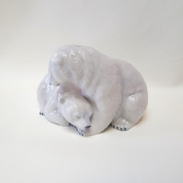 Animali Cuccioli Orso polare